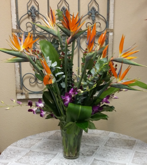 Island Paradise Tropical in Universal City, TX | Karen's House Of Flowers & Custom Creations