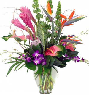 Island Paradise Tropical Collection  3-day advance order in Monument, CO | ENCHANTED FLORIST