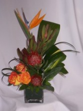Island Tropic - Flowers Prince George BC: AMAPOLA BLOSSOMS   Modern Designed Exotic Flowers   Welcome To Your New Home Flowers