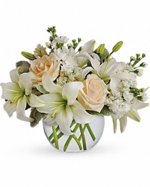 Isle of White Arrangement
