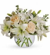 Isle of White Glass Bowl Arrangement