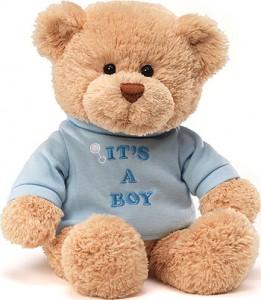 It's a Boy Teddy Bear New Baby