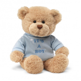 It's A Boy Teddy Bear Stuffed Animal