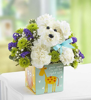 It's a-DOG-able™ Boy  in Valley City, OH | HILL HAVEN FLORIST & GREENHOUSE