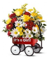 It's a Girl! Also available for a boy