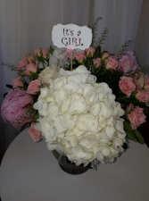 It's A Girl Floral Arrangement