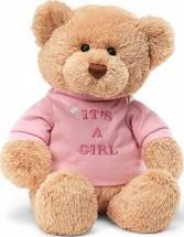 It's a Girl Teddy Bear New Baby