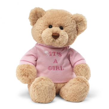 It's A Girl Teddy Bear Stuffed Animal
