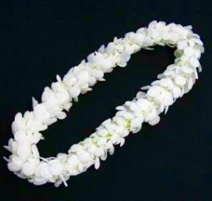 It's About Time!  Graduation Lei in San Bernardino, CA | Graceful Lily