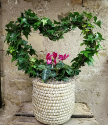 Ivy Heart with Cyclamen