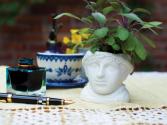 Jane Austen planter for 2
