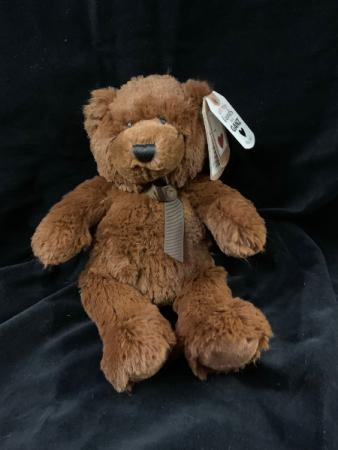 Jeremy  Teddy Bear