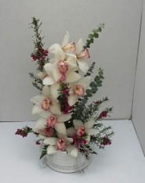 Jewels and Orchids Fresh flower arrangement