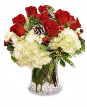 Jingle all the way Fresh arrangement in Mount Pearl, NL   FLORAL-ELEGANCE