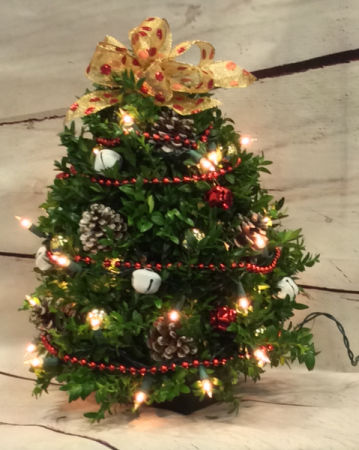 Jingle Bell Boxwood Tree