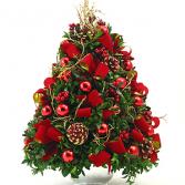 Jingle Red Boxwood Boxwood tree