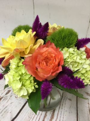 Joy  in Easton, CT | Felicia's Fleurs