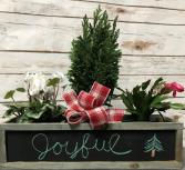 Joyful Arrangement