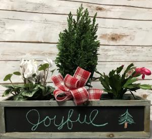 Joyful Arrangement in Weymouth, MA | DIERSCH FLOWERS