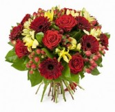 Regal Rose Bouquet 50.00  60.00  70.00
