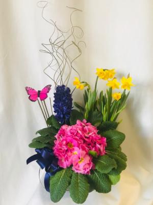Joyful Springtime Planter Basket in Coleman, WI | COLEMAN FLORAL & GREENHOUSES