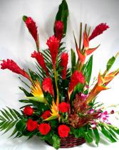 Joyfull day Tropical Flowers
