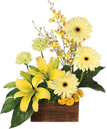 Joyous Sunlight Floral Design