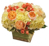 Juliets Garden Cut Flower Arrangement