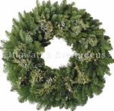 Juniper Wreath