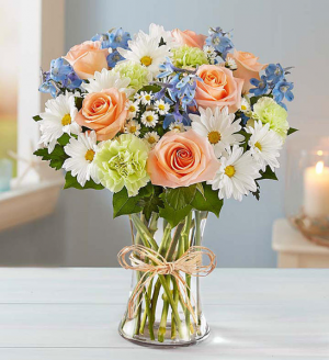 A Little Orange, A Little Blue A Gator's Dreams Come True! starts $39.99 in Gainesville, FL | PRANGE'S FLORIST