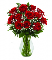 just because 12 red roses in vase