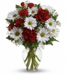 JUST BECAUSE Vase of Daisies and Carns