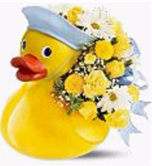 Just Ducky (Baby Boy) Arrangement for Baby Boy