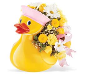 Just Ducky (Baby Girl) Baby Girl Arrangement