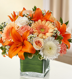 Just Peachy! Arrangement in Winston Salem, NC | RAE'S NORTH POINT FLORIST INC.