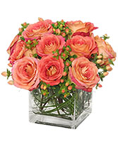 Just Peachy Roses Arrangement in Rock Island, Illinois | LAMPS FLOWER SHOP