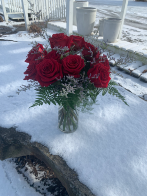 """Just Simple And Romantic"" 12 roses - several colors available in Syracuse, IN 
