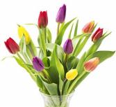 Just Tulips Vase Arrangement