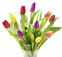 Just Tulips Vase Arrangement