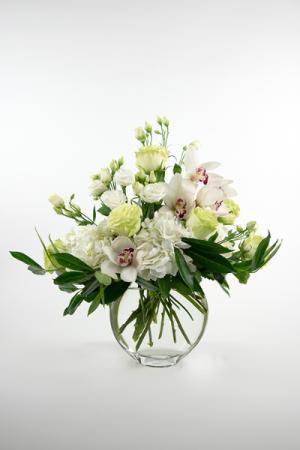 Just white  in Falls Church, VA   Geno's Flowers