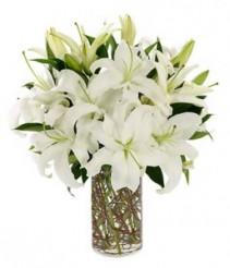 Just White Lilies Elegant Vased Arrangement