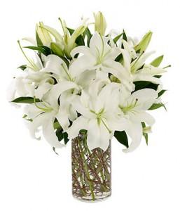 Just White Lilies Elegant Vased Arrangement