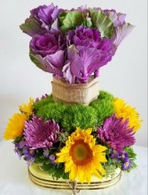 Kale and sunflower High style arrangement