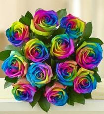 Kaleidoscope Roses Dozen Rose Arrangement