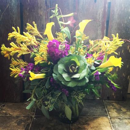 Kangaroo Paw Garden Vase Arrangement