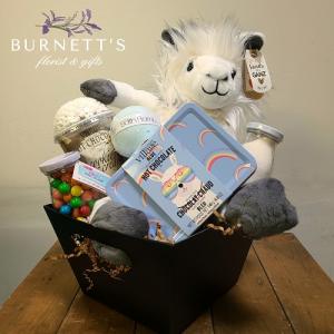 Kids Gift Basket in Kelowna, BC | Burnett's Florist