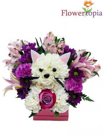 Kitty Kitty Arreglo de Flores toda ocasion