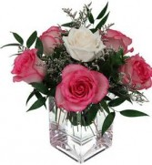SORORITY FLOWER  1 WHITE ROSE SURROUNDED BY 5 PINK ROSES ARRANGED IN A CUTE CUBE VASE WITH FILLER!!