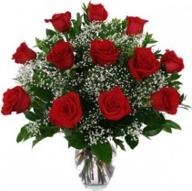 One Dozen Red Roses arranged in a vase with Baby's Breath!