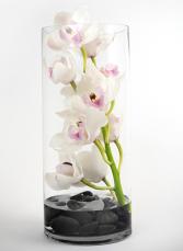 La mia fioritura GEF018